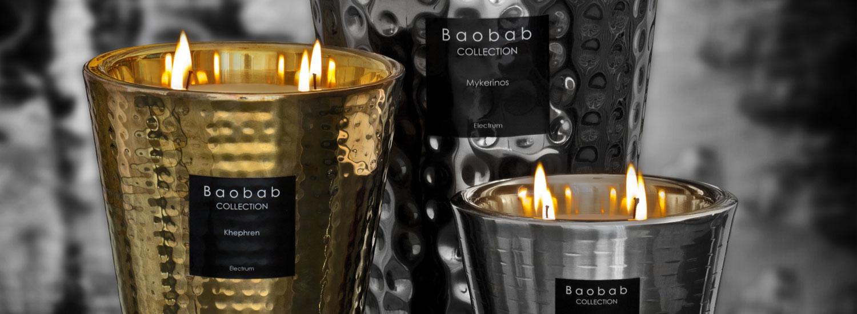 baobab_slide_01